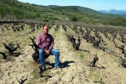 Catas de Vino en Sierra de Béjar