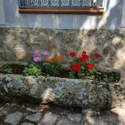 Casa Rural con encanto en Salamanca