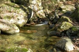 Visita la Sierra de Béjar, Salamanca